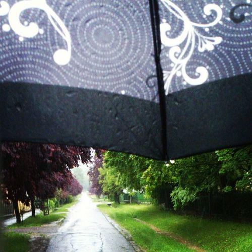 Ajjajjajjj elkapott a vihar! Umbrella Esernyő Vihar Eso rain summerrain summer may