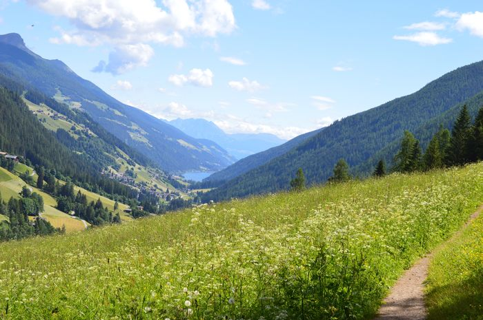 Happy Weekend to you, dear friends 🙋🏻♀️💐☀️ Italien Italia Italy Alto Adige South Tyrol Südtirol Ultental Beauty In Nature Mountain Scenics - Nature Plant Tranquility Sky Tranquil Scene Landscape Growth Environment Mountain Range Land Tree Cloud - Sky Nature Green Color Non-urban Scene Day Idyllic No People