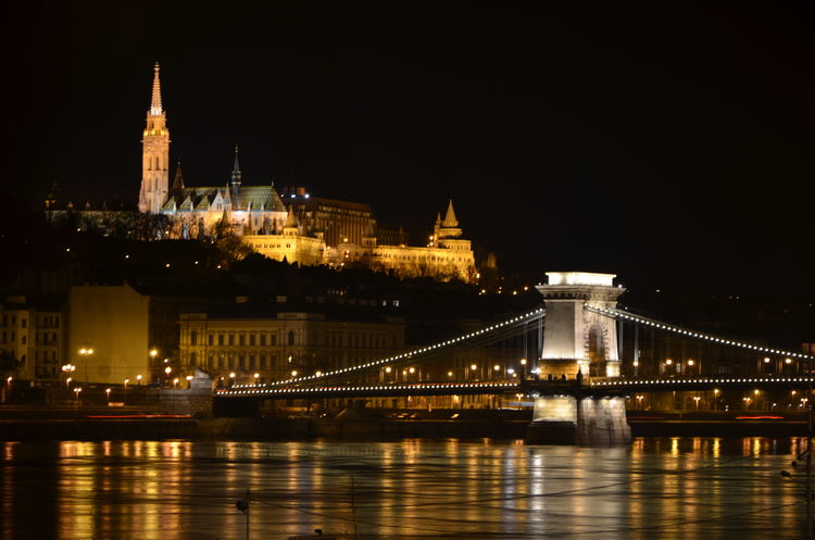 Bridge Budapest Castle Capital Cities  Capital City Chain Bridge City Cityscape Danube Danube River Famous Place Lánchíd Night Outdoors River