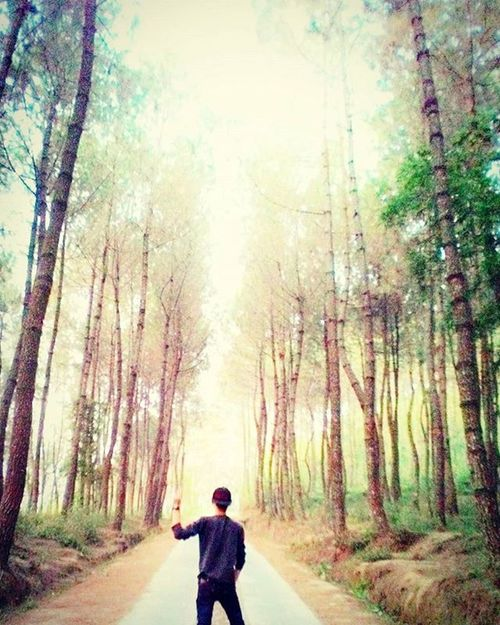 Asian  Asianman Instalike Instahub Instago Instapic Instadaily Instasize Instamood Likes Likeforlike Like4like Followforfollow Tagsforlikes Selfie Follow4follow INDONESIA Photooftheday Picoftheday ExploreEverything Exploreindonesia Explore Exploring Magelang Jawatengah ootd