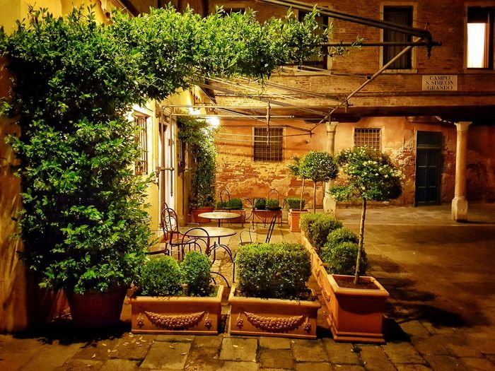Campo San Simeone Grande, Venice, Italy Travel Destinations Typical Houses Nightphotography Night Shot Nocturnal Venezia Venice, Italy Veneto Flower Pot Romantic Romantic❤ Italy Italy❤️ Building Exterior Built Structure Plant Backyard Front Or Back Yard Ivy Creeper Plant Creeper