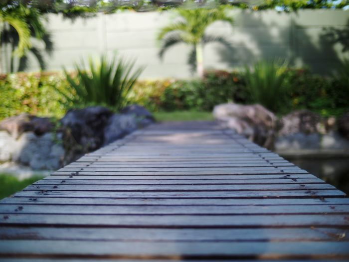 Low Angle View The Way Forward Wood Paneling Close-up Outdoors Wooden Bridge Wood - Material Tree Plant Nature