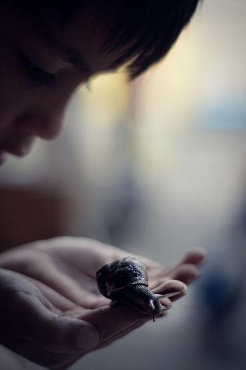 Close-up of boy holding snail