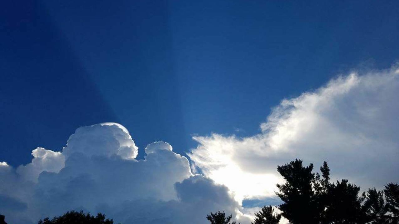 sky, low angle view, nature, beauty in nature, tree, no people, cloud - sky, day, outdoors, blue, scenics, tranquility