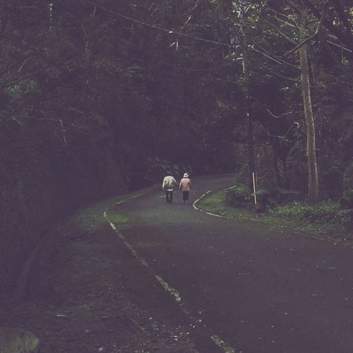 Taiwan Love Garageimg Life Forest Beauty In Nature Nature Mountain Tranquility Valentine's Day  Hiking
