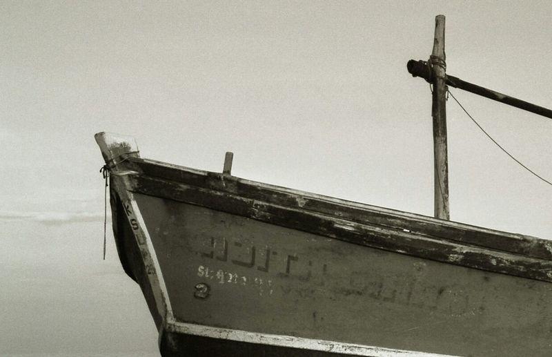 Sea Life Seascape Blackandwhite Photography No Edits 35mm Film C-41 Developed #photographer #colorfilm