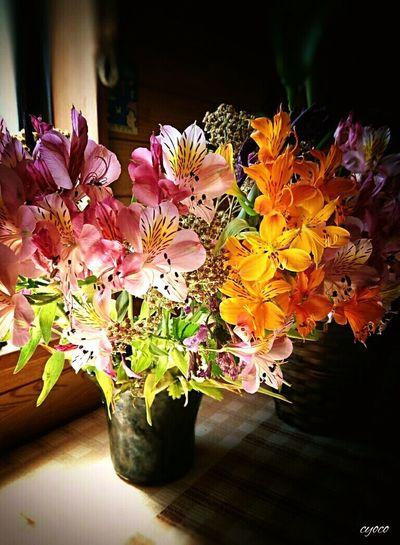 アルストロメリアAlstroemeria Flowers Flowers_collection Flowerslovers EyeEm Gallery EyeEm Flower Eyeem Photography Japan Photography