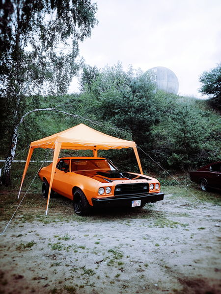 General Lee? Car Transportation Tree No People Outdoors Classic Car US Cars Dodge Charger Festival Race61 Roadrunners Paradies Rock'n'Roll