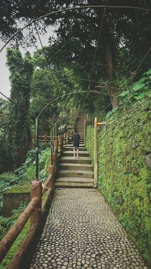 Mountain Range Nature Tree Full Length Rear View Sky Architecture Steps And Staircases Stairway Stairs Steps Hand Rail