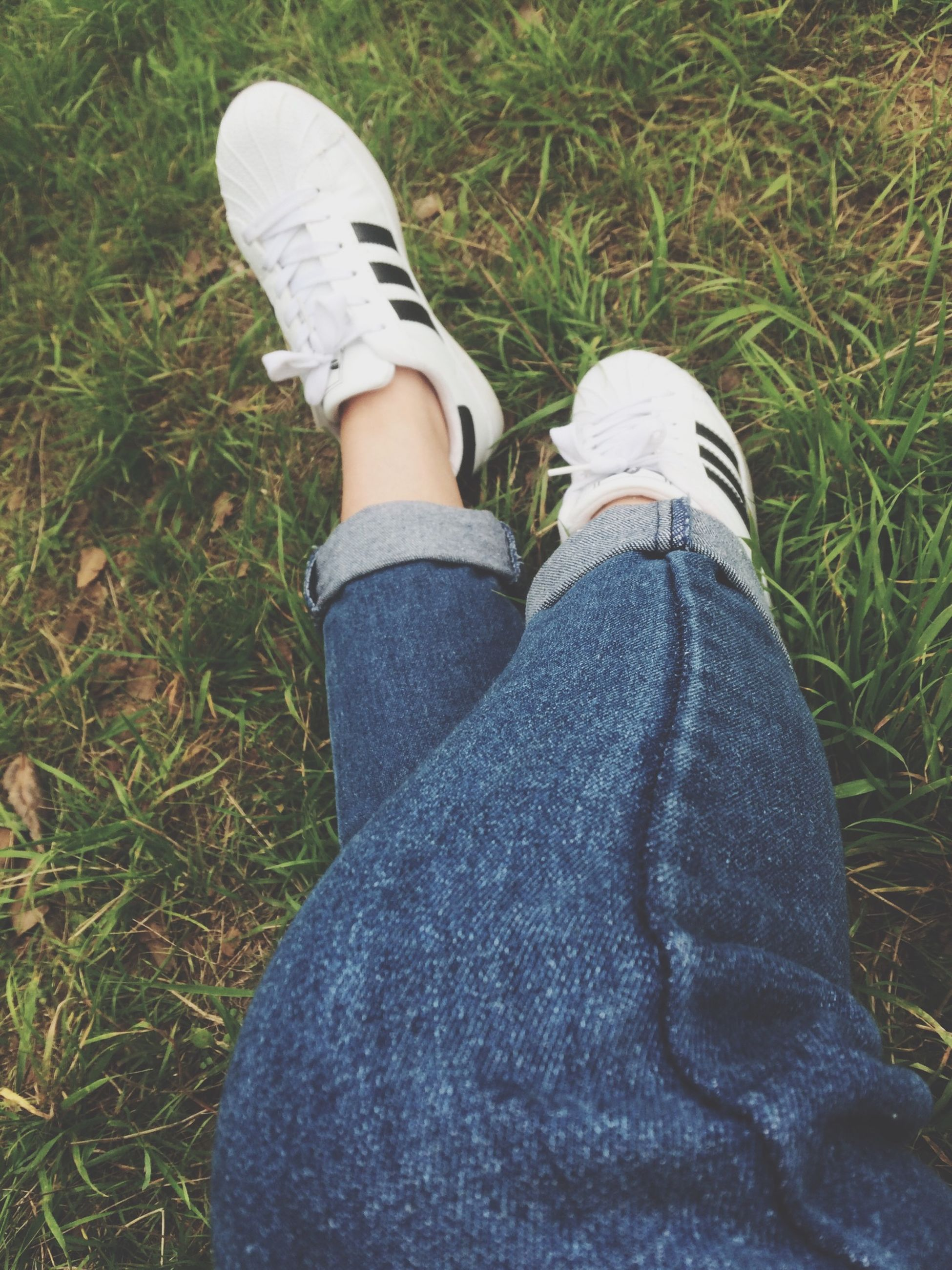 low section, grass, shoe, person, jeans, high angle view, grassy, field, personal perspective, footwear, lifestyles, standing, leisure activity, relaxation, human foot, casual clothing, canvas shoe
