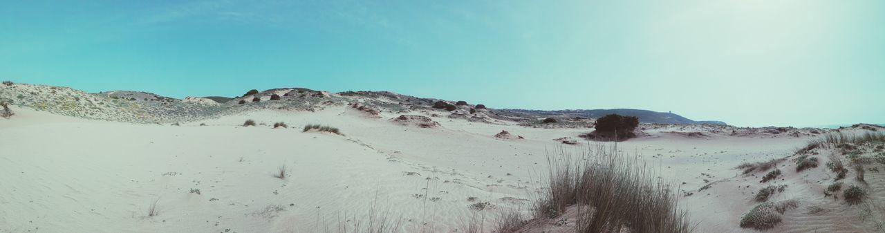 Sardegna Sardinia Sardegna Italy  Beach Beachphotography Nature UnderSea Water Sandy Beach Sand