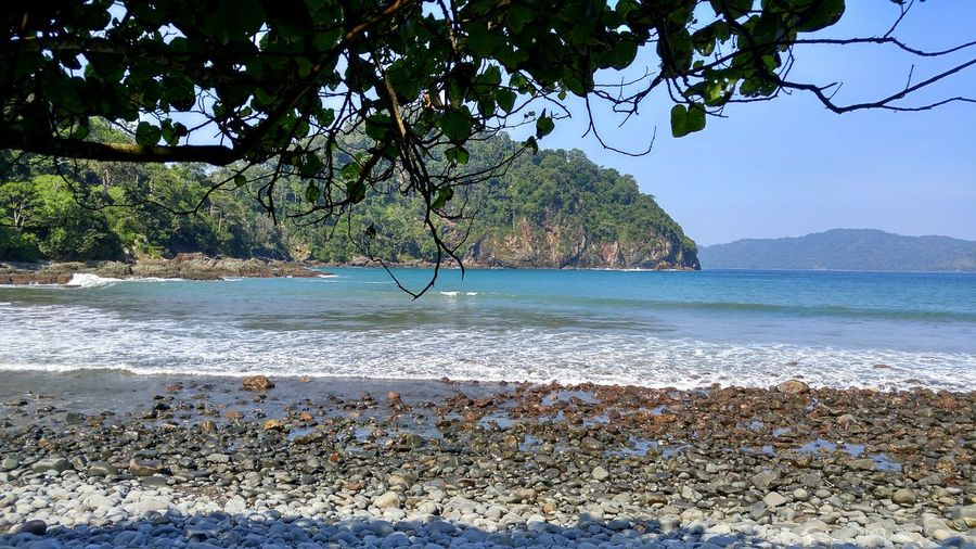 Color Of Life Teluk Hijau ( Green Bay ) Banyuwangi Explore Indonesia