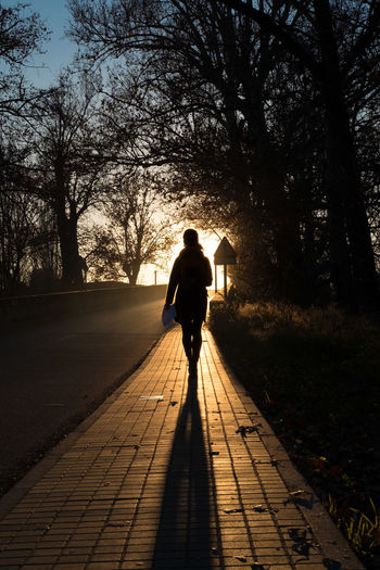 Afternoon Arriving Autumn Leaving Leisure Activity Loneliness Melancholy New Horizons One Person Only Men Only Women Path Peace People Real People Shadow Silhouette Sunset The Way Forward Tree Walking Around Walkway Way Way Of Life Winter