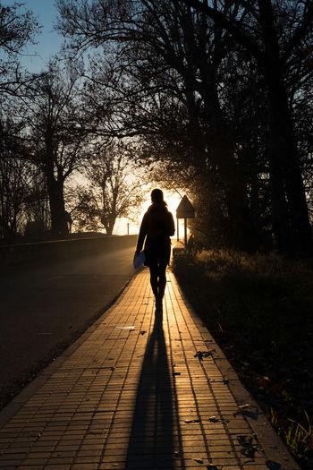 Rear View Of Silhouette Woman Walking On Street