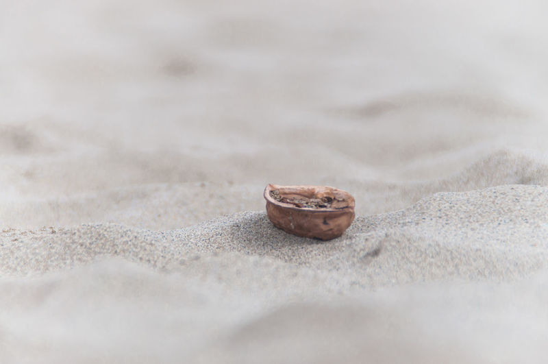Close-up of bread on sand