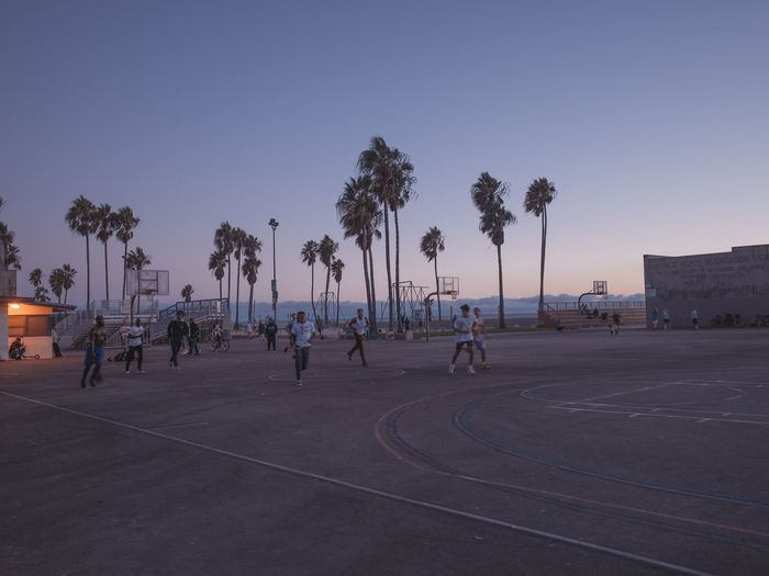 People by palm trees against clear sky at sunset