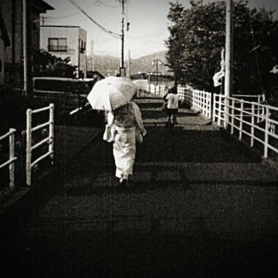 Cellphone Photography Phoneography Afternoon Walk Shizuoka-shi Japan Black And White Photography