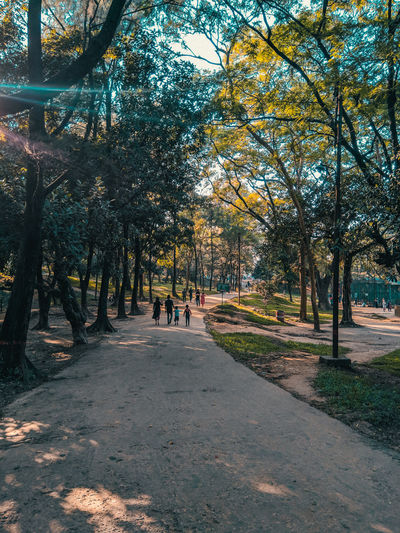 Afternoon Walk Adults Only Green Color Visit Bangladesh Walking Around Adventure Animal Themes Autumn Beauty In Nature Branch Change Day Growth Nature No People Outdoors Park People people and places Scenics Sky Tranquility Tree Walking Walking Around The City  Young Adult