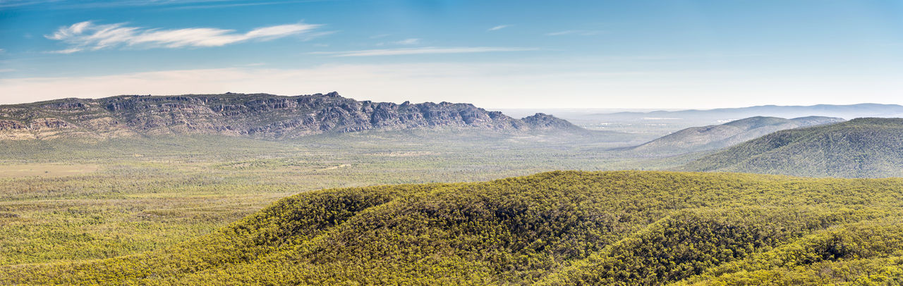 Panoramic view of mountains in the Victoria Valley, Grampians National Park, Victoria, Australia Scenics - Nature Landscape Beauty In Nature Environment Mountain Tranquil Scene Tranquility Non-urban Scene Land Plant Nature Sky No People Day Mountain Range Idyllic Tree Remote Outdoors Travel Destinations The Grampians Australia Australian Landscape Mountains