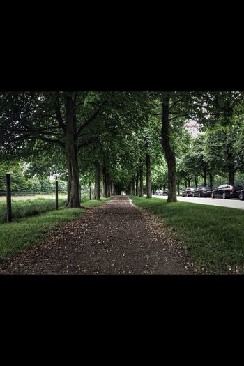 Nature Stuttgart Walking