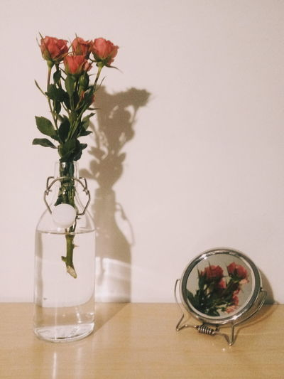 Flower Table Freshness No People Indoors  Nature Fragility Flower Head Vscocam PhonePhotography EyeEm Nature Lover EyeEm Best Shots Light And Shadow