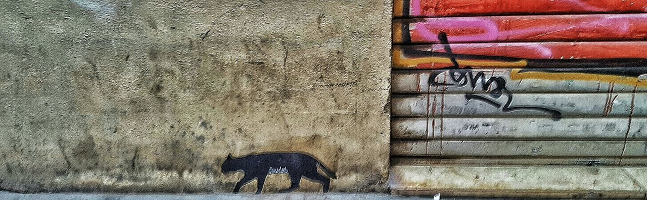 Graffiti Graffiti Art Grafitti Graffiti Wall Graffitti Graffitiart Graffiti & Streetart Grafiti Graffity Grafitti Wall Grafiti Art Graffiti The World Urbanphotography Urban Photography Urban Art Urban Gato Gato Gatos Cat Cats Cats 🐱 GatoNegro Gato Negro