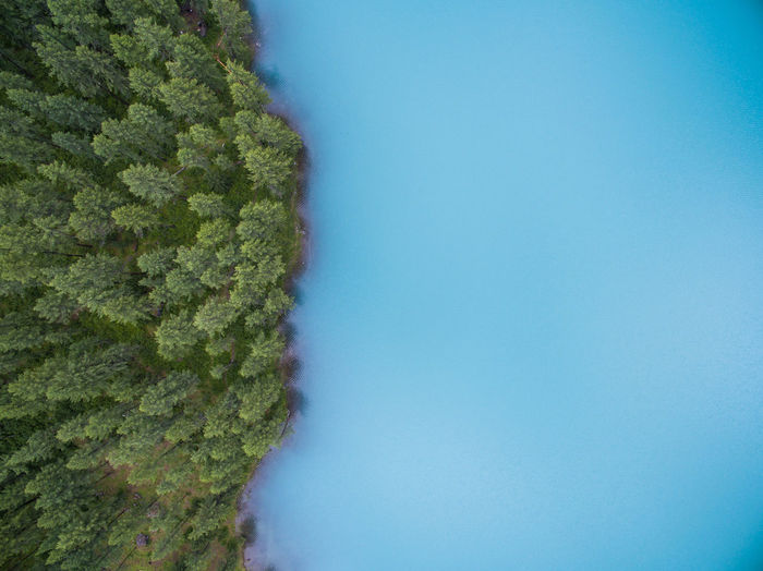 Shavlinskie Lakes. Altai Aerial Aerial Photography Altai Dji Forest Lake Mountains Nature Phantom Phantom 3 Shavla Water Color Palette A Bird's Eye View Flying High