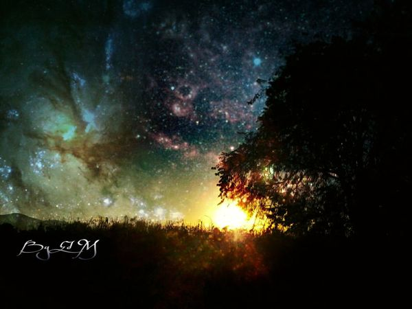 Silhouette Tree Springtime Clouds And Sky Photography Skin Of The Night Silhouettes Stars Mi Cielo