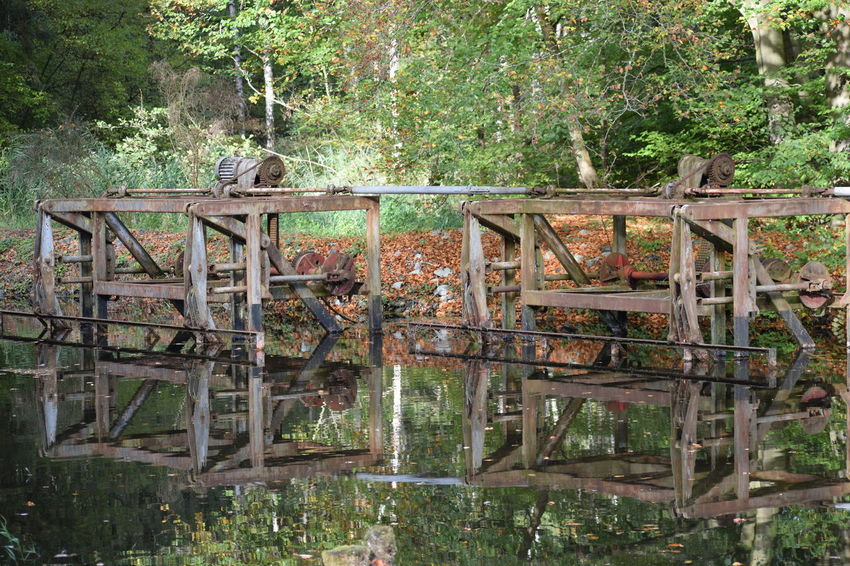 old metal in wood Plant Tree Day Nature Reflection Forest Water Land No People Outdoors Wood - Material Growth Abandoned Lake Tranquility Old Architecture Transportation WoodLand