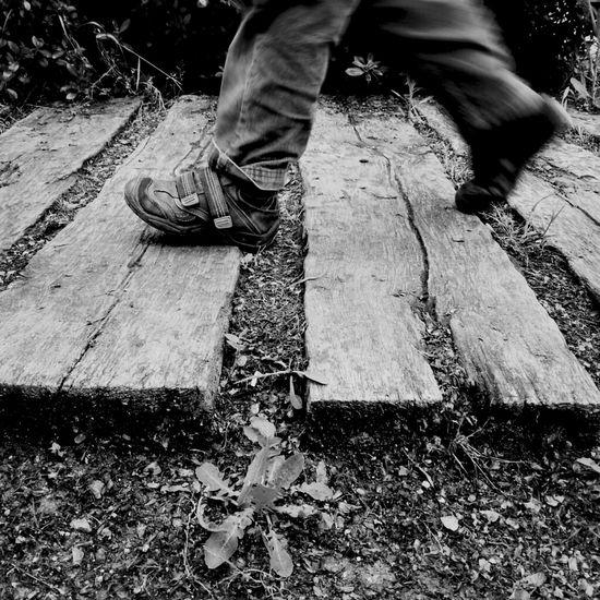 Pasito a paso. Walking