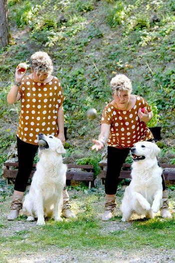 Mydog Happiness Doglife Campinglife Giochiamo Sempreinsieme