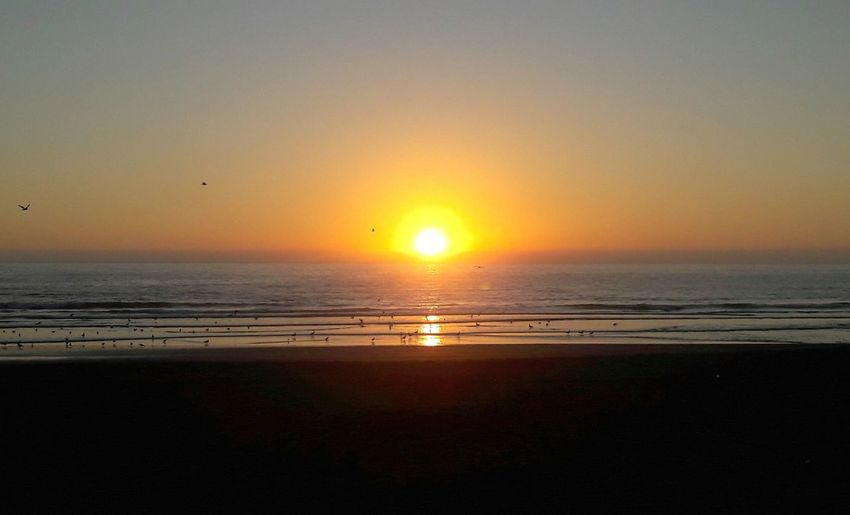 Sunset Ocean Beach Chile LaSerena Travel Colour Of Life