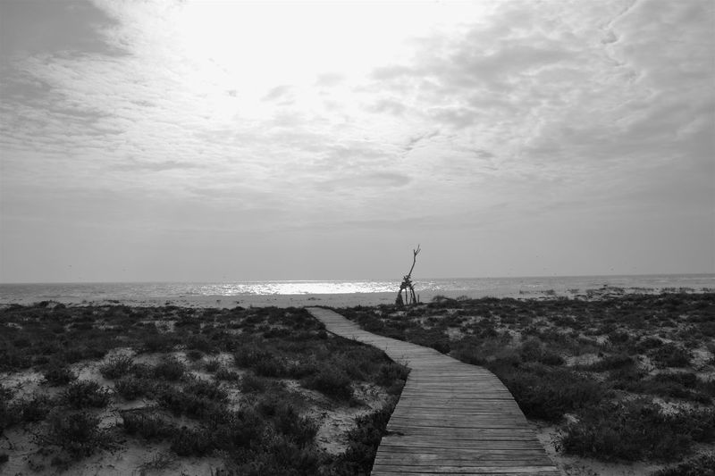 Ilha Deserta next to Faro, Portugal 2015 Algarve Beach Beauty In Nature Black & White Black And White Blackandwhite Photography Bw Day Faro Horizon Over Water Island Light Light And Shadow Nature Nikon Outdoors Pier Portugal Scenics Sea Sky Sky And Clouds Sky_collection Water Water Reflections