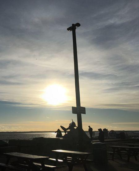Shark River View Sunlight Hull Humber