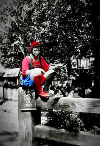 Jester  on the fence 🎭 At The Fair Renaissance Renfaire Renfest Renaissance Festival