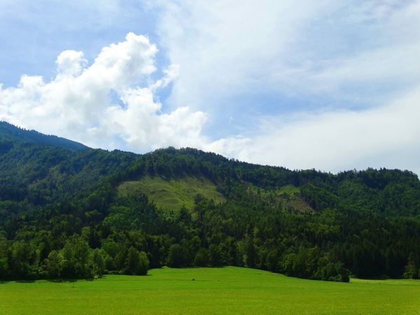 ... Beautiful Nature Beautiful Day EyeEmNewHere Beauty In Nature Beauty In Nature Blue Sky Day Grass Green Color Nature Sky Tree
