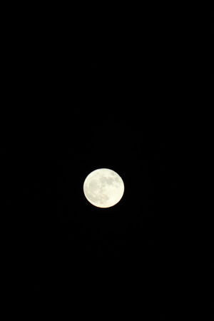 2016 supermoon... Beauty In Nature Close To Earth Full Frame Magestic Sky Moon Nature Night Super