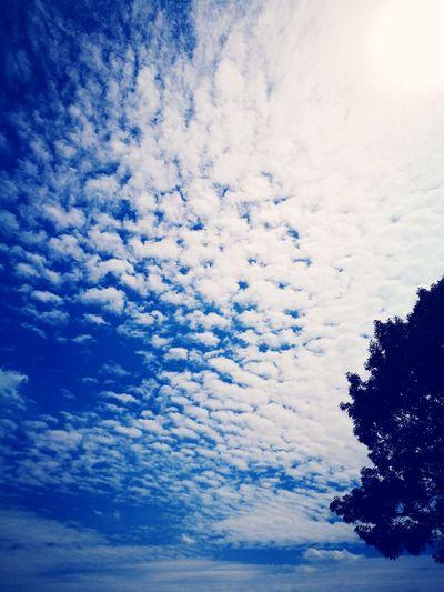 After a long walk Cloud - Sky