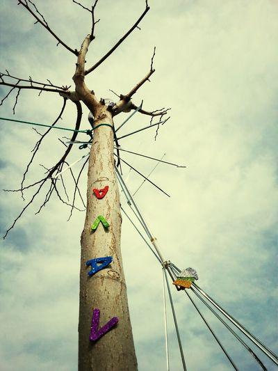 Cosas Q Viven En Los árboles Sí Vava Con V