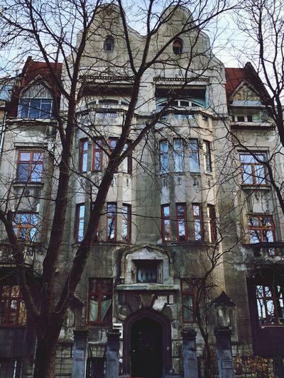 Architecture No People Bare Tree