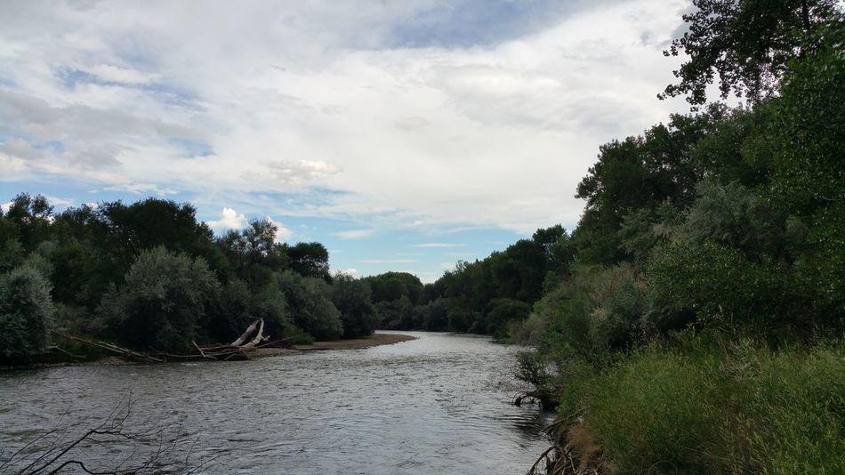 River Arkansas River Colorado Water Trees Riverbank River View Sky And Clouds River Bank  Riverside