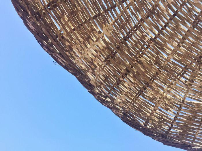 Wooden Wood Background Nobody Summer Textured  Natural Summer Summertime Umbrella Sun Umbrella Parasol Outdoor