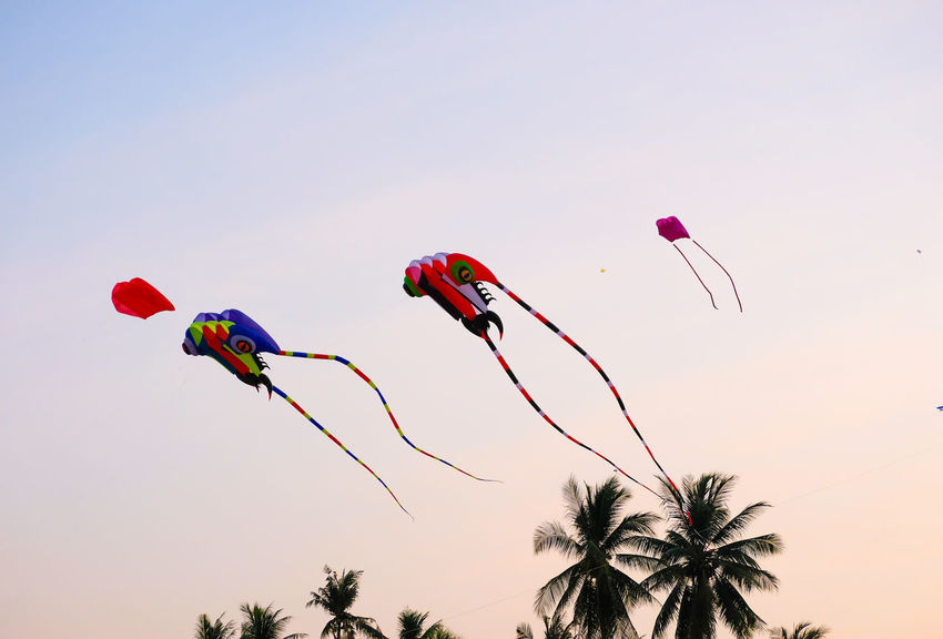 SAM-RAT BEACH - February 10, 2018: Thailand International Kite Festival on February 5, 2018 in Sam-rat beach, Suratthani province Thailand. SAM-RAT BEACH - February 10, 2018: Thailand International Kite Festival On February 5, 2018 In Sam-rat Beach, Suratthani Province Thailand. Clear Sky Day Flying Kite Kite - Toy Low Angle View Multi Colored Nature No People Outdoors Parachute Sky Tree