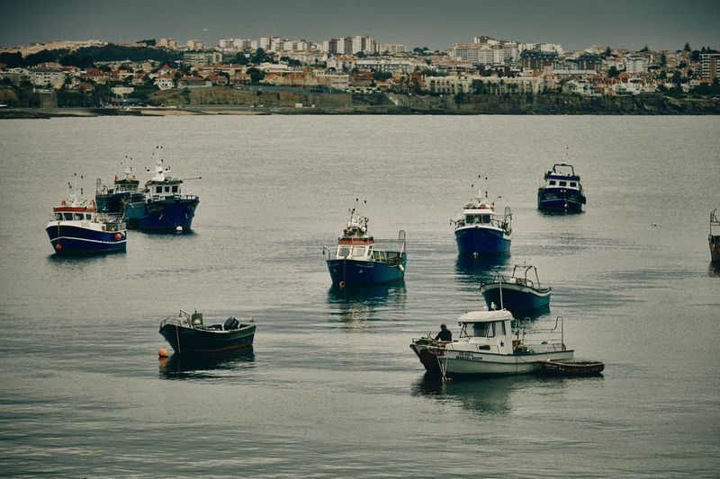 Fishing Boats off Cascais Leica M9 35mm Summicron Travel Photography Cascais Portugal Nautical Vessel Transportation Water Mode Of Transportation Sea Waterfront Ship Fishing Boat Harbor Outdoors Day