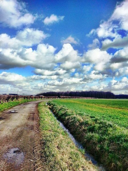 Die Wolken jagen über den Acker ... Farmland Green Hedge Long Way Beauty In Nature Big Clouds