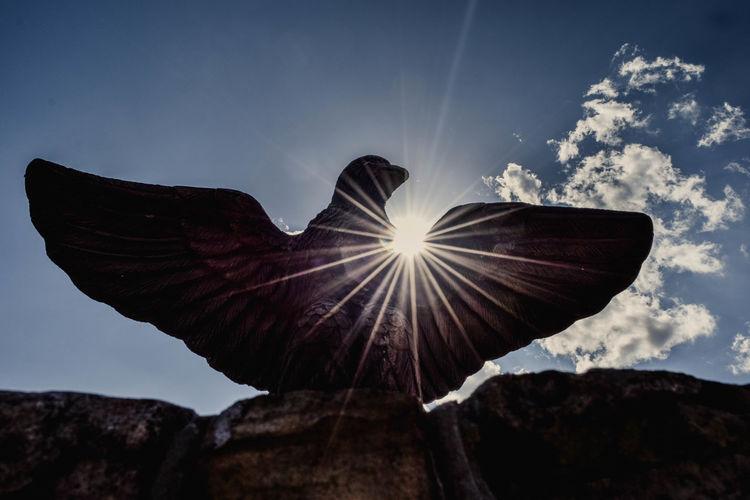 Low angle view of sunbeam on bird statue