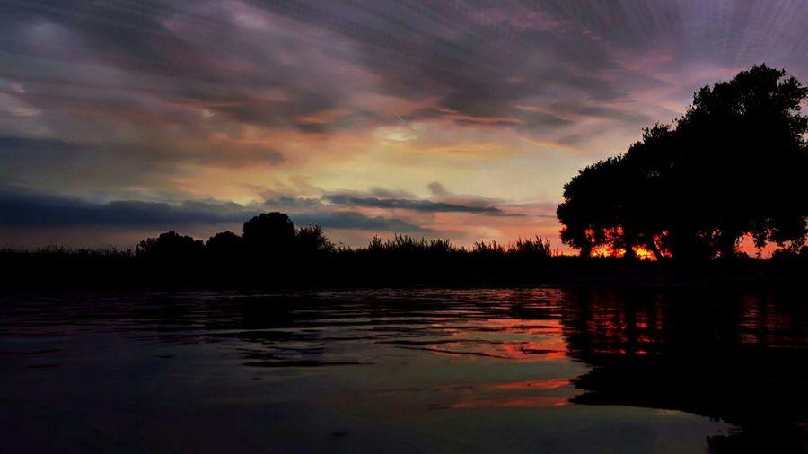 Sunset Dive Serenity Sunset Swim