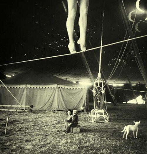 A melhor experiência da vida de uma pessoa é o circo ? Boanoite #goodnight Boanoite Happy :)