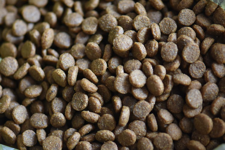 Food And Drink Full Frame Backgrounds Brown Food Freshness Large Group Of Objects No People Roasted Coffee Bean Close-up Still Life Indoors  High Angle View Textured  Textured Effect Cat Food