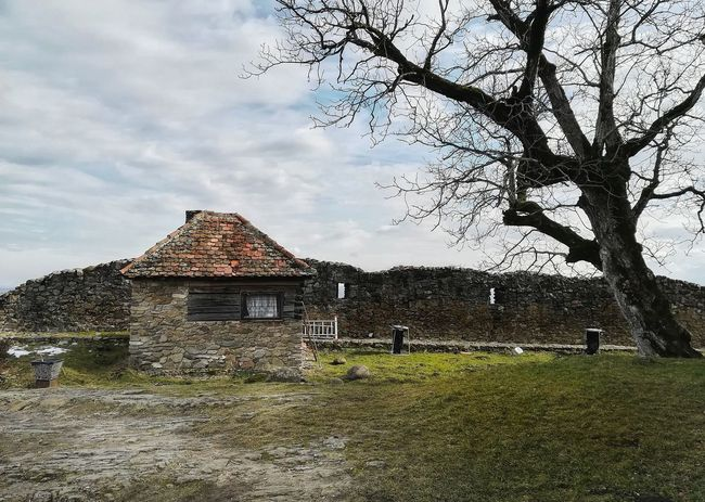 This image tends to take you to the past where things were simple and more relaxed. Huaweiphotography P10lite PhonePhotography Landscape_photography Outdoors Building Exterior Architecture Landmark Romania Ruins Nature EyeEmbestshots Trees Light And Shadow Landscape Cottage Walls Old House Field